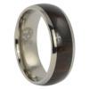 Titanium and Ebony Mens Ring
