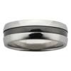 Titanium & Zirconium Stripe Mens Ring